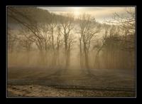 nebelgrenze03.jpg