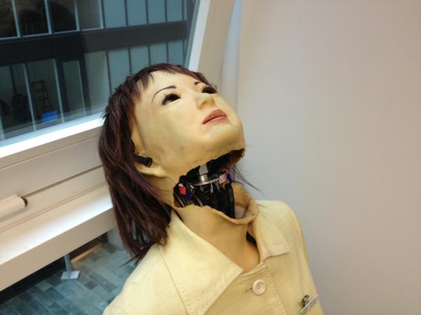 Roboter mit Skin